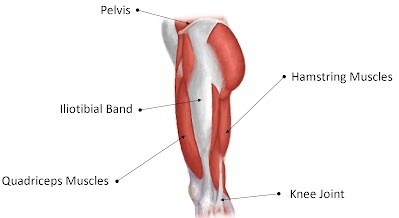 iliotibial band syndrome - rehabexercise, Cephalic Vein
